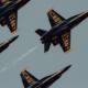 navy, team